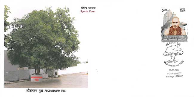 Special Cover on Audumbaram Tree
