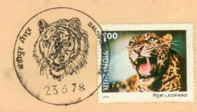 Bandipur Permanent Pictorial Cancellation