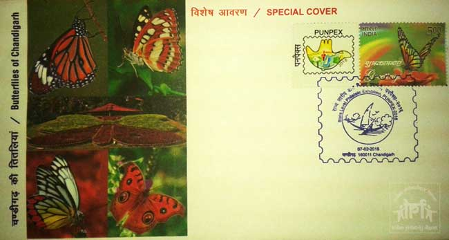 Special Cover on Butterflies of Chandigarh