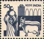 Woman in Dairy and Farming