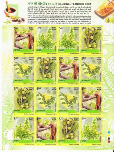 Medicinal Plants Sheetlet