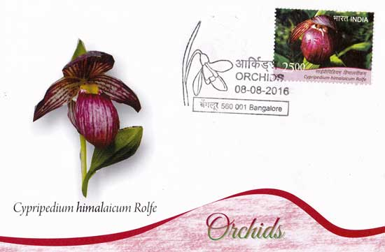 Maxim Cards on Orchids released by Karnataka Postal Circle at Bengaluru