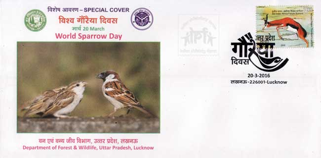 Special Cover on World Sparrow Day